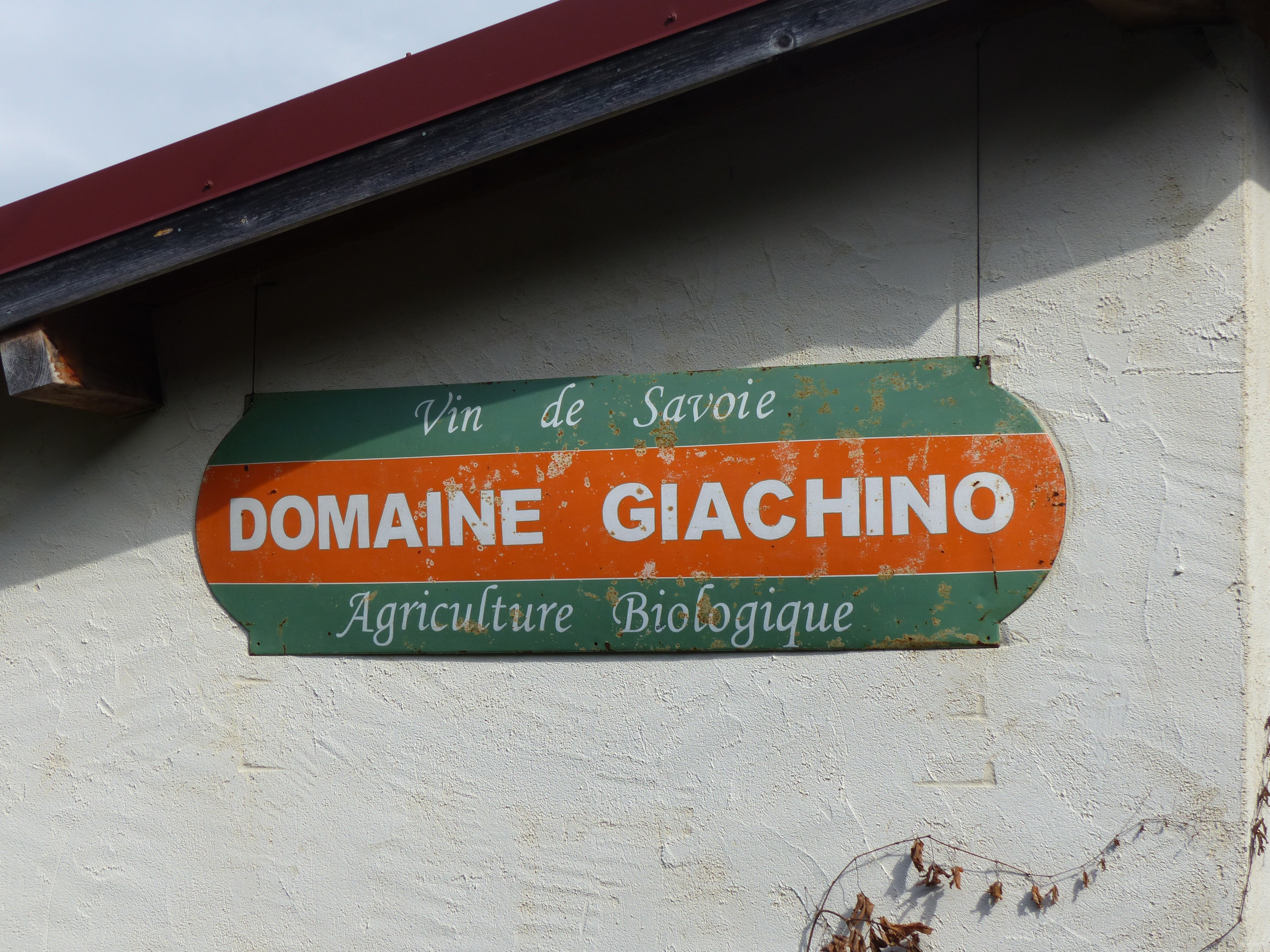 Vin bio du domaine Giachino