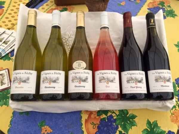 Les vins de Féchy